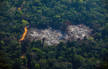 Brazil fires increased by more than 12% in one year