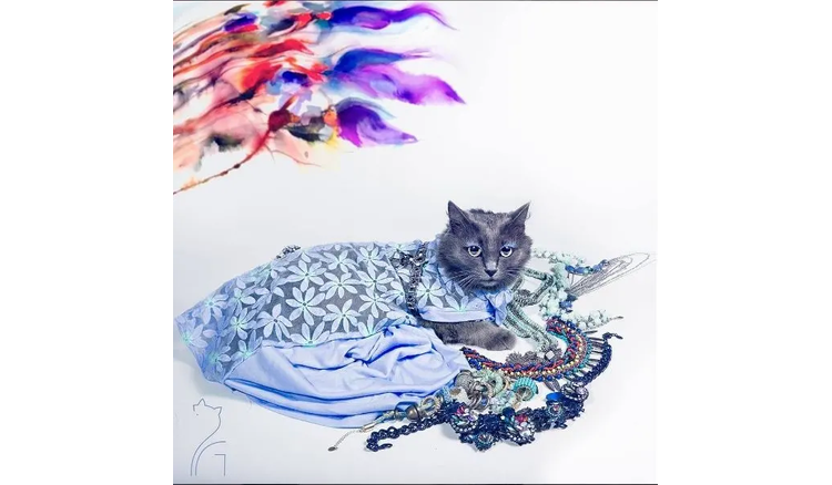 """Could not take your eyes off the most luxurious """"Cat Queen"""" in the world"""
